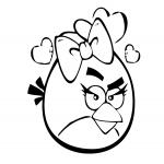 Angry Birds fille dessin à colorier
