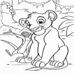 Simba Roi Lion
