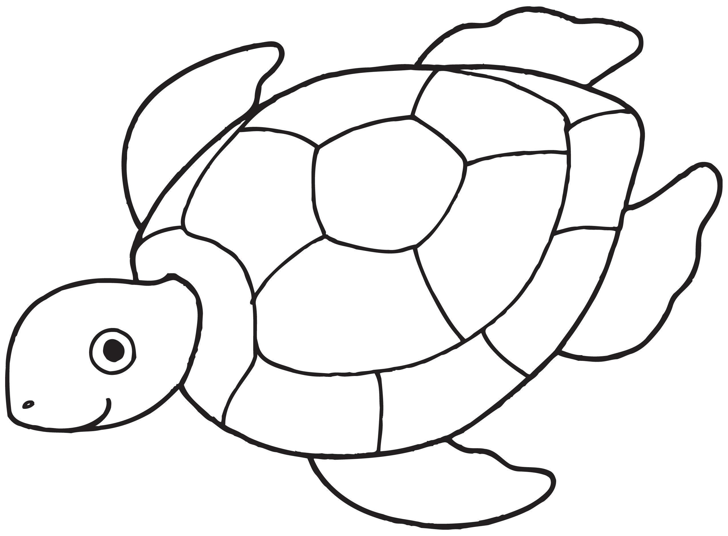 Inspirant Image A Colorier De tortue