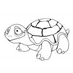 Coloriage Petite tortue