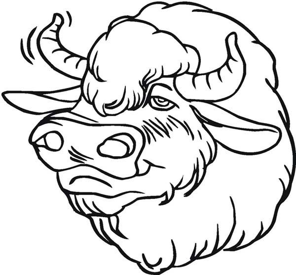Coloriage Bison à imprimer
