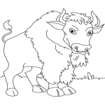 Coloriage Bison facile