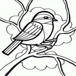 Coloriage Petit oiseau