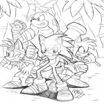 Sonic Boom Héro