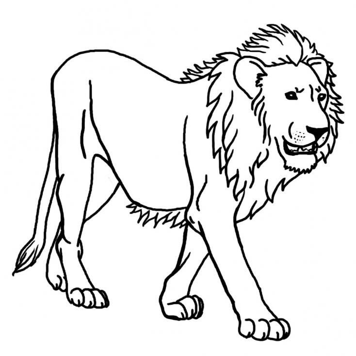 Coloriage Roi de la Jungle à imprimer