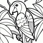 Perroquet dessin dessin à colorier
