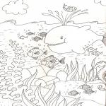 Coloriage Animaux de la mer
