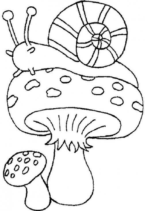 Coloriage Champignon et escargot à imprimer