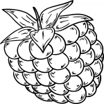 Coloriage Framboise