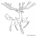 Xerneas Pokemon