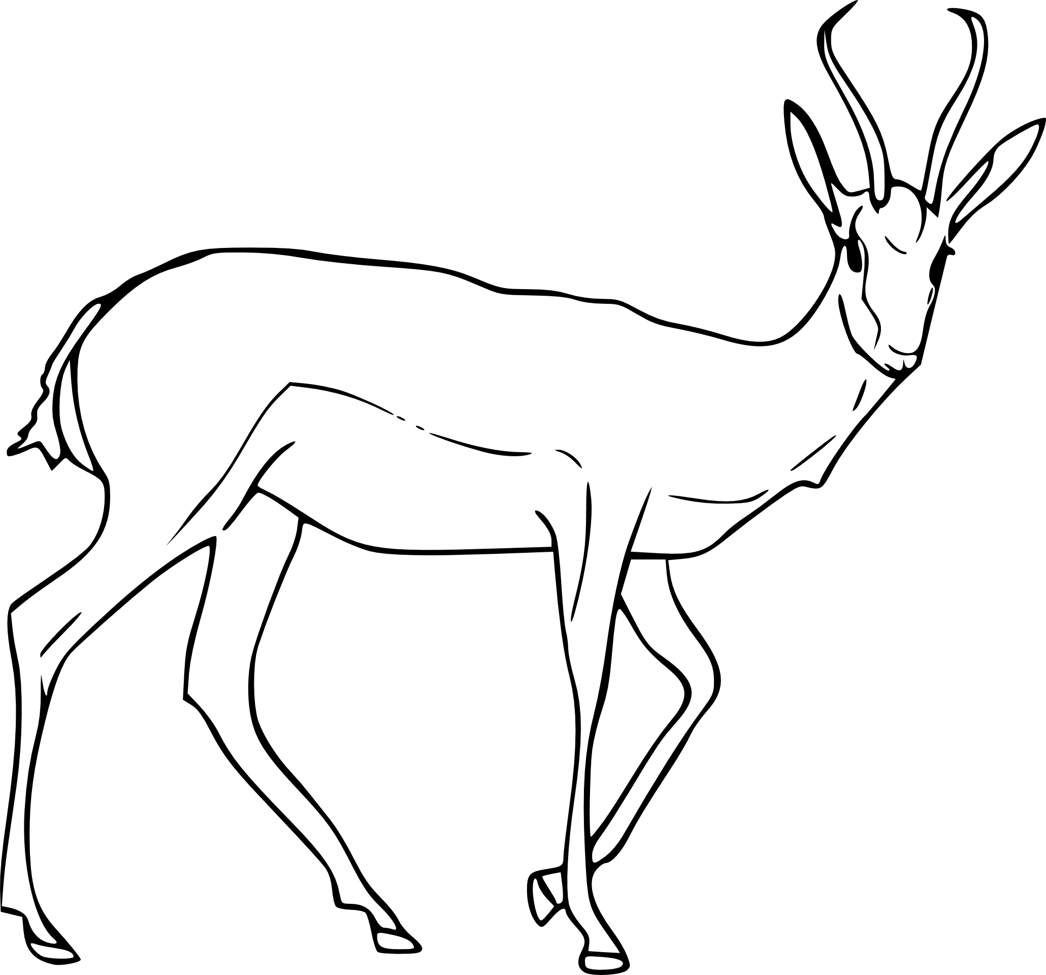 Antilope on Antelope Coloring Pages