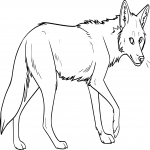Coloriage Coyote