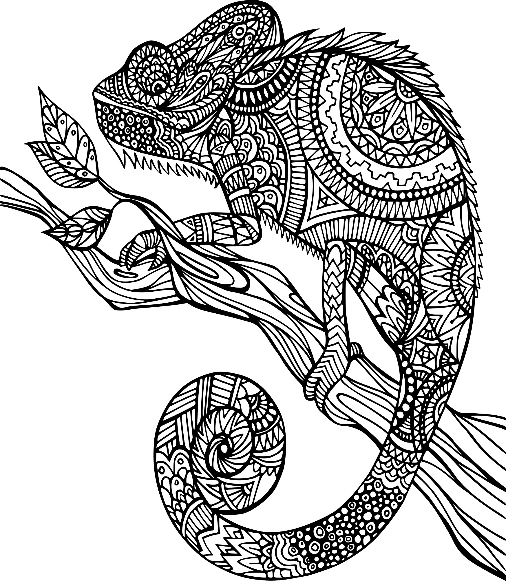 Coloriage anti stress cam l on imprimer sur coloriages info - Coloriage anti stress gratuit ...
