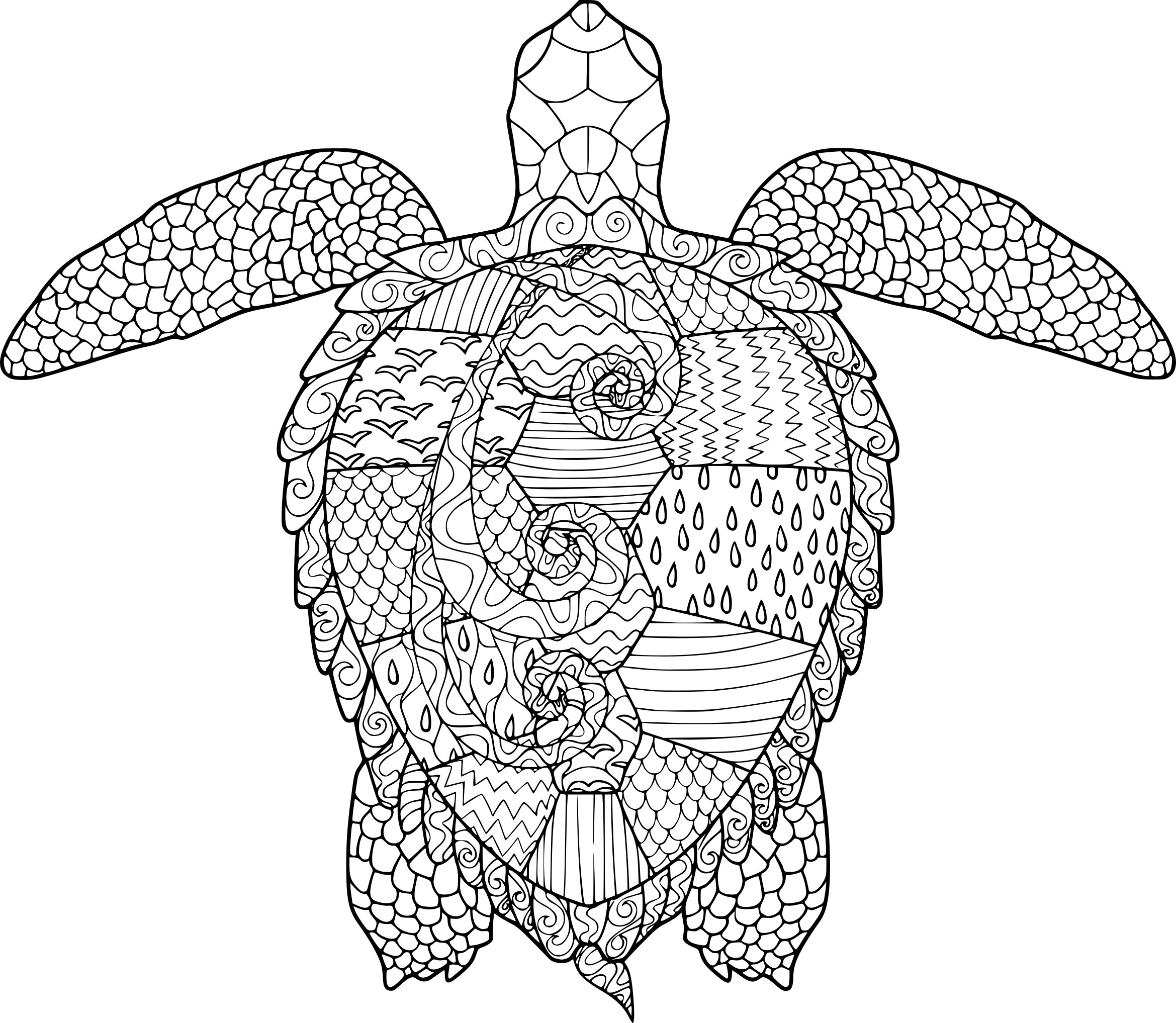 Coloriage Mandala Animaux Tortue.Coloriage Anti Stress Tortue