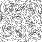 Coloriage Anti-Stress roses
