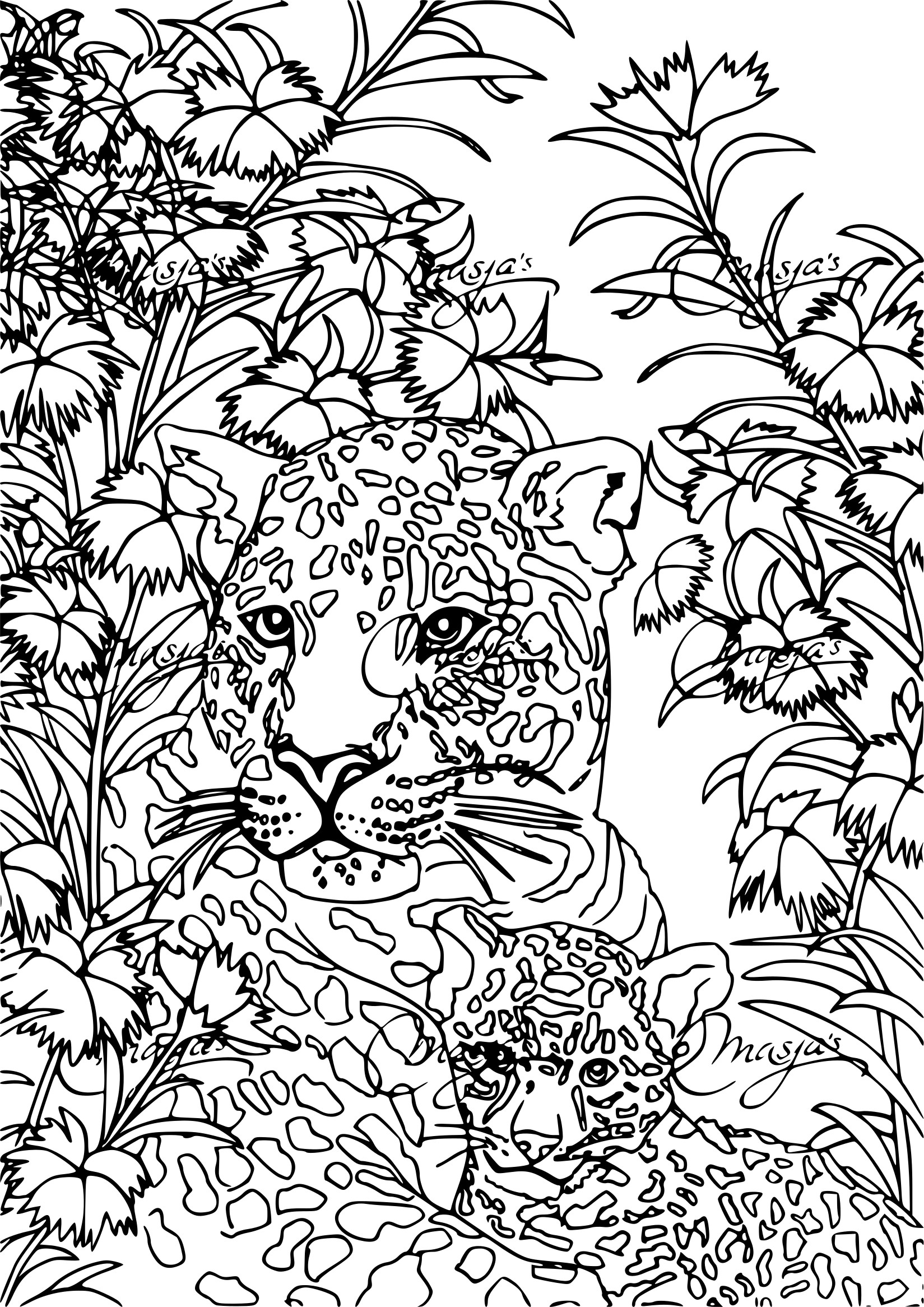 Coloriage anti stress tigre - Anti coloriage ...