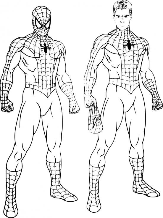 Coloriage spiderman peter parker imprimer sur coloriages - Spider man en dessin ...
