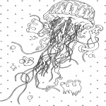 Coloriage Adulte Meduse