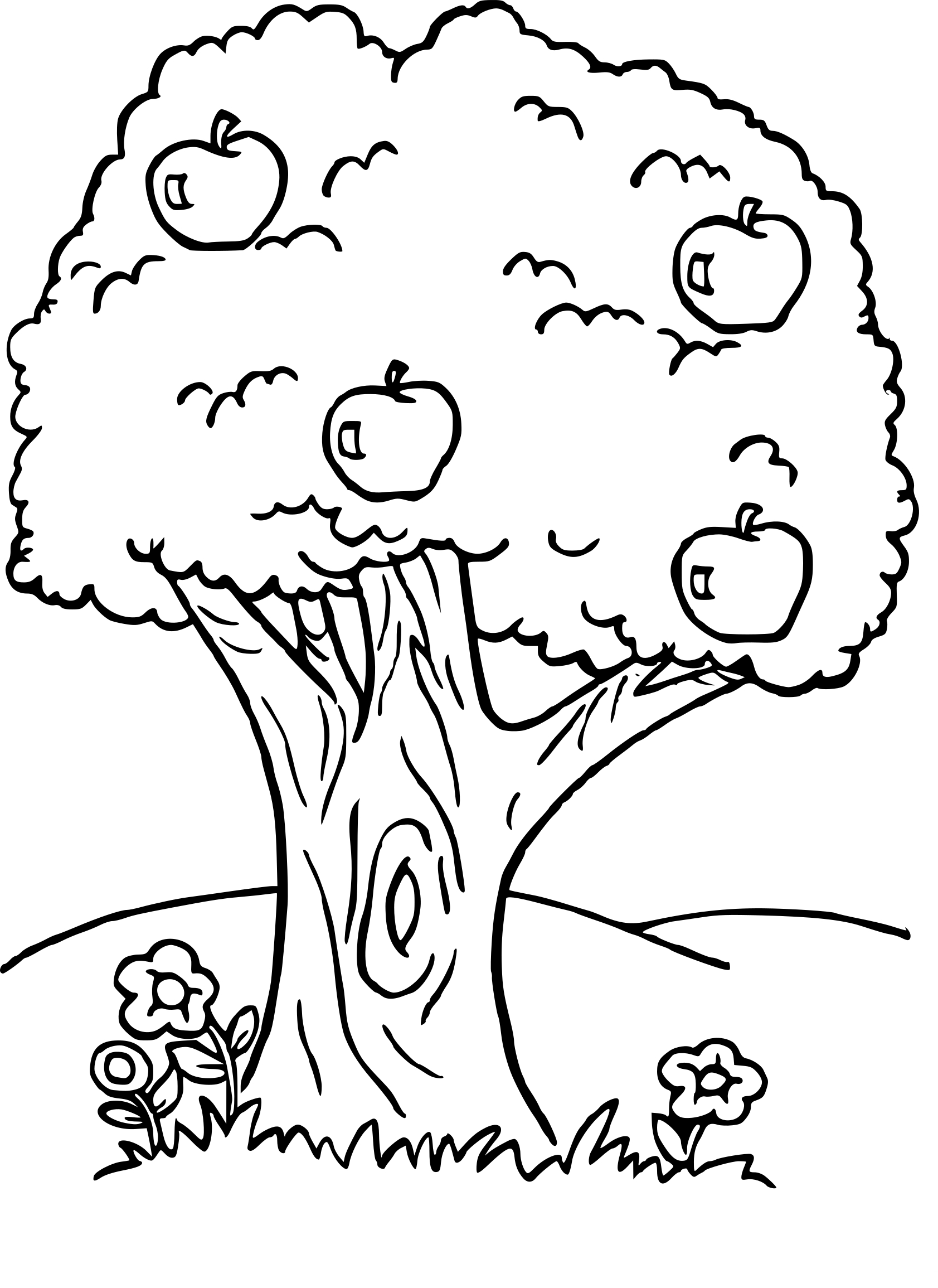 10 further 3 as well Libellule in addition Arbre Fruitier Dessin in addition 3. on disney coloring pages nature