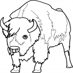 Coloriage Bison animal