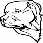 Coloriage Chien rottweiler
