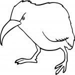 Coloriage Kiwi animal
