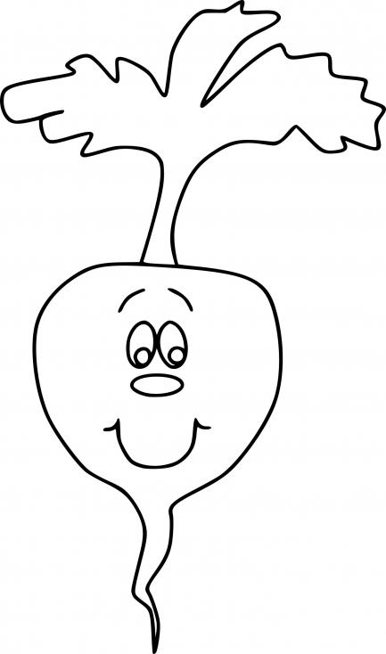 Légume radis