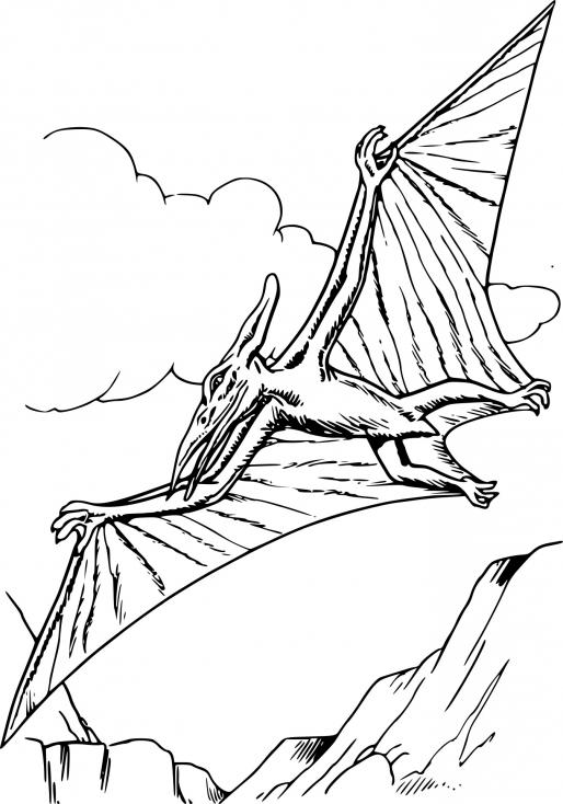 Coloriage Dinosaure pterodactyle à imprimer