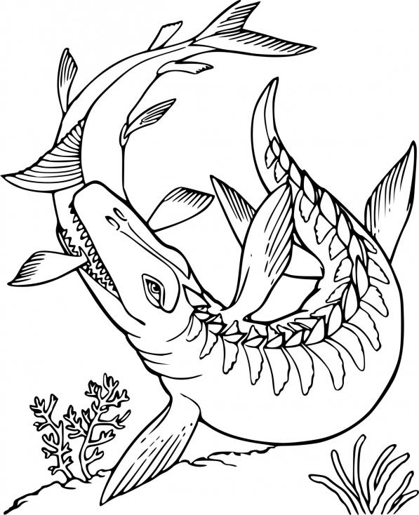 Coloriage Dinosaure de mer à imprimer