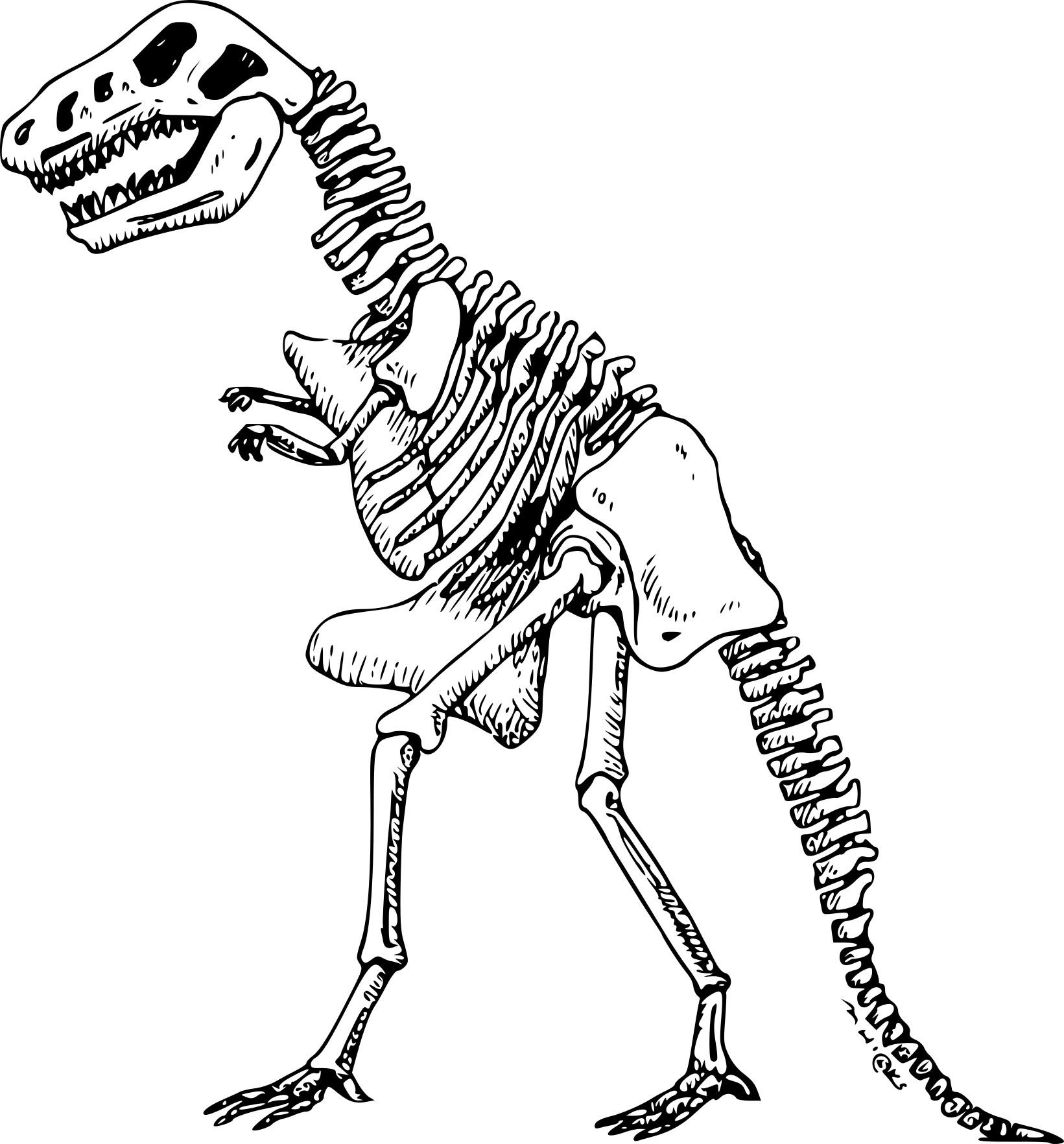 Luxe Dessin à Colorier Dinosaure T-rex